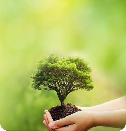 기후 생명 살리기 운동